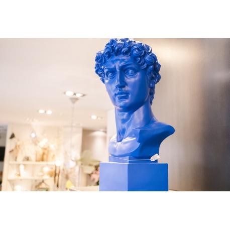 Busto uomo blu Bellimbusti
