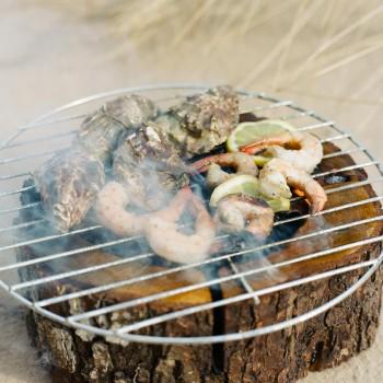 Barbecue Eco grill M - Zani